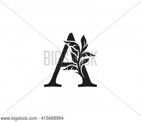 Classic Letter A Heraldic Logo. Vintage Classic Ornate Letter Vector.