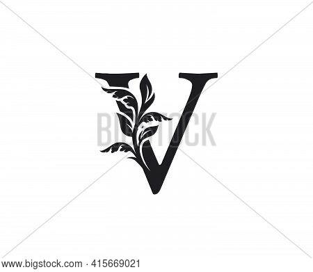 Classic Letter V Heraldic Logo. Vintage Classic Ornate Letter Vector.