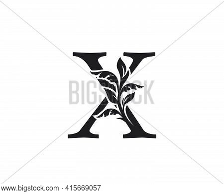 Classic Letter X Heraldic Logo. Vintage Classic Ornate Letter Vector.