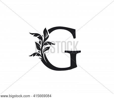 Classic Letter G Heraldic Logo. Vintage Classic Ornate Letter Vector.