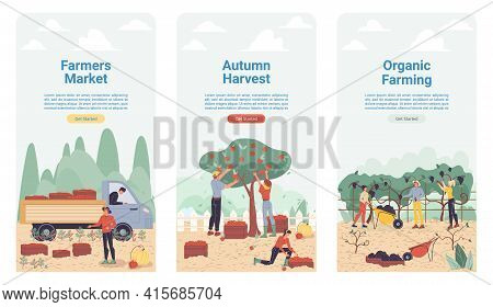 Vector Cartoon Flat Farmer Characters Harvesting, Workers Harvest Vegetables, Fruits, Load Them On T