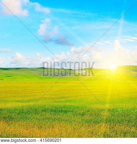 Green Wheat Field And Beautiful Sunrise. Hilly Terrain.