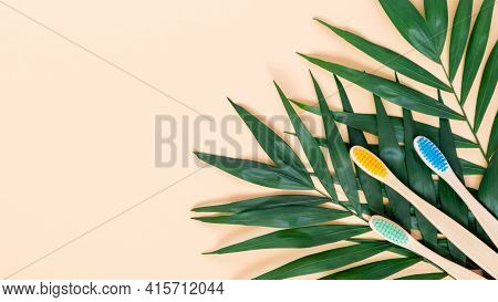 Eco-friendly Bamboo Toothbrush And Green Palm Leave On Pastel Beige Background. Colorful Natural Woo