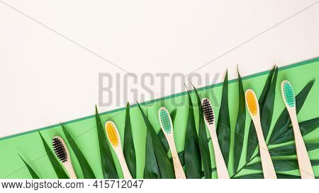 Eco-friendly Bamboo Toothbrushes And Palm Leaves On Pastel Beige And Green Background. Colorful Natu
