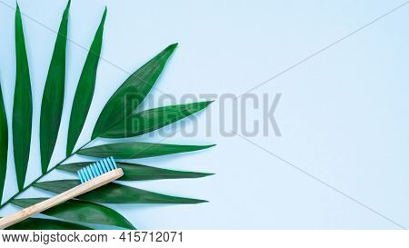 Eco-friendly Bamboo Toothbrush And Green Palm Leave On Pastel Blue Background. Natural Wooden Tooth