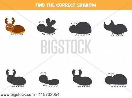Find The Correct Shadow Of Cute Stag Beetle. Educational Logical Game For Kids.