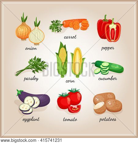 Vegetables Ingredients. Collection Of Vegetables Ingredients, Each Signed By The Text. Vector Illust