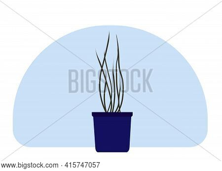 Vector Drawing Of A Home Potted Plant. Plant With Tall Stems