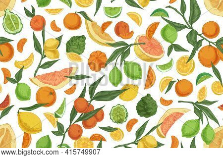 Seamless Pattern With Different Citrus Fruits On White Background. Hand-drawn Endless Texture With O