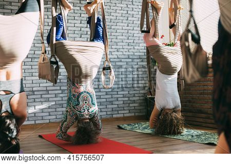 A Group Of Young Female Yogis Doing Aerial Yoga In Hammocks At A Fitness Club. Aero Yoga, Sports, Fi