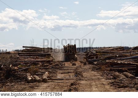 Forest Industry. Operations For Loading-unloading Logging Truck At Felling (cutover Area) And Loggin