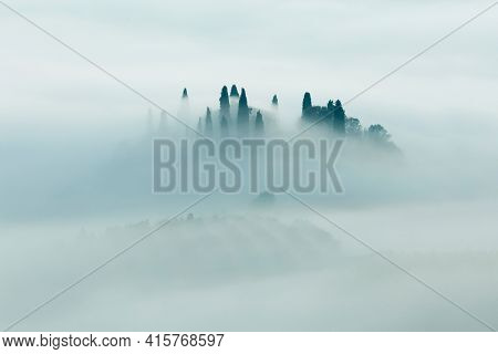 Minimalistic Silhouette of foggy valley - Artistic foggy panoramic landscape at the morning time, trees and hills in fog, light and dark. Tuscany, Italy