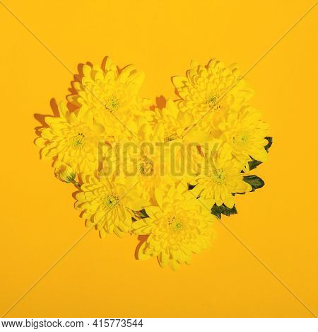 Heart Shape Laid Out From Yellow Chrysanthemums On A Yellow Background. Valentines Day Flat Lay Layo