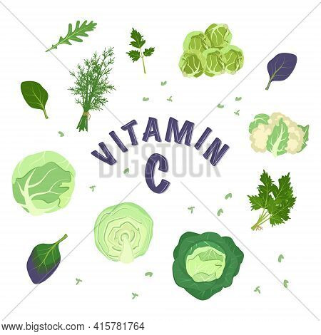 A Set Of Different Types Of Cabbage And Herbs For The Diet. Source Of Vitamin C. Green Ingredients F