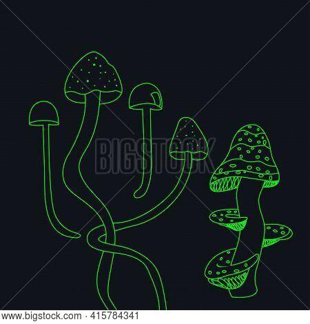 Neon Magic Mushrooms On Dark Background. Set Of Fluorescent Mushrooms. Unusual Mushrooms On A Dark B