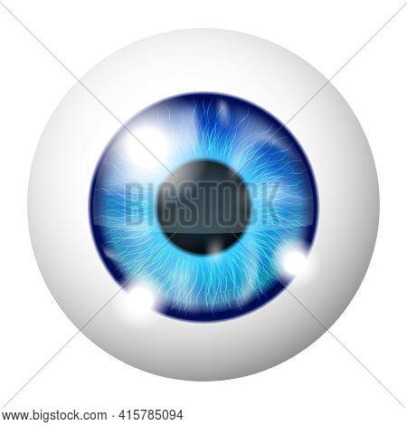 Vector Blue Human Eye Macro Over White