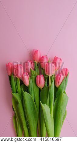 Pink Greeting Card For Mothers Day, Womens Day, 8 March With Pink Tulips Flowers.