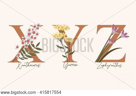 Hand Drawn Floral Alphabet With Spring Flowers In Pastel Colors.letters X, Y, Z With Flowers Zephyra