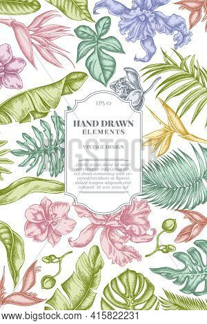Card Design With Pastel Monstera, Banana Palm Leaves, Strelitzia, Heliconia, Tropical Palm Leaves, O