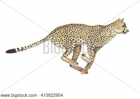 Running Cheetah, One Animal Of African Savannah, Large Spotted Cat. Vector Isolated Object On A Whit