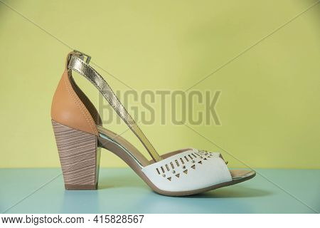 Old Female Classic Shoes On Colorful Background