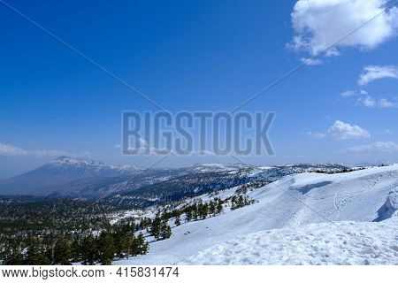 Green Pine Forest View Of Mount Hachimantai With White Snow Foreground With Blue Sky In Tohoku, Japa