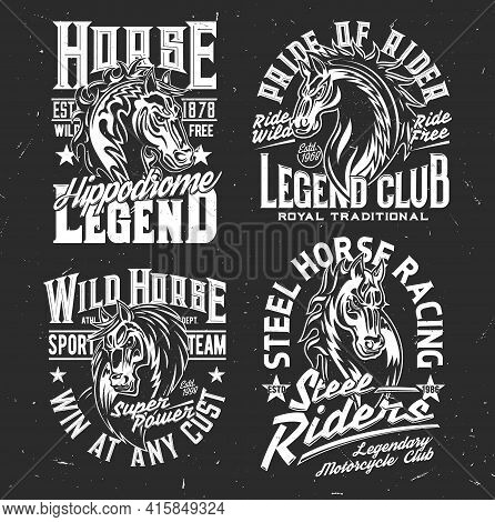 T-shirt Prints With Horse Stallion Heads, Equestrian Sport, Racing Club. Vector Mascot. Mare Monochr