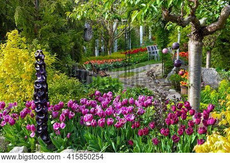 Colorful spring flowers in the beautiful garden