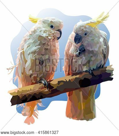 A Pair Of Yellow-crested Cockatoo Sit On A Branch Close To Each Other Against A Blue Sky. One Bird H