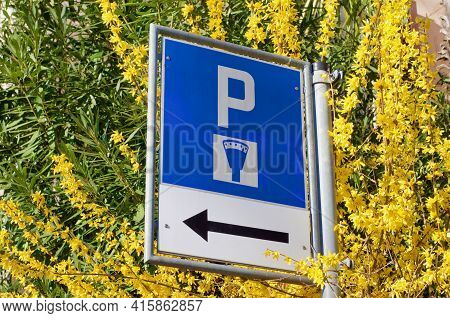 Swiss Street Parking Sign With Parking Meter Symbol, Surrounded By Yellow Blooming Forsythia Flowers