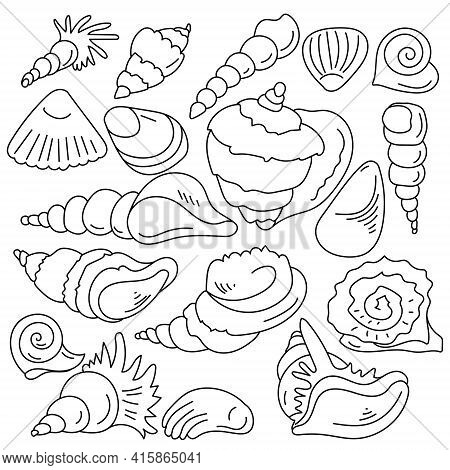 Doodle Set Of Clam Shells, Outline Sea Inhabitants And Their Shells Vector Illustration
