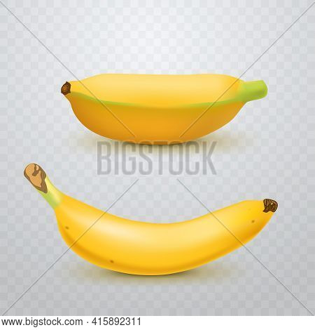 Set Of Realistic Banana And Baby Bananas On Checkered Transparent Background. Tropical Fruits. 3d Ve