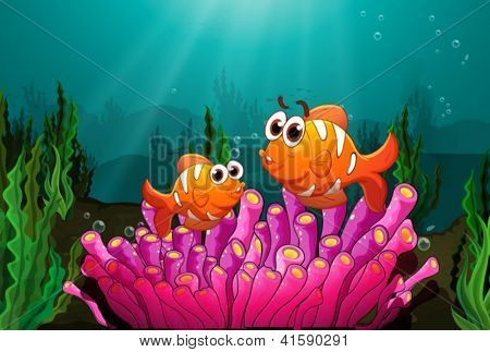 Illustration of two fishes above a pink coral found underwater