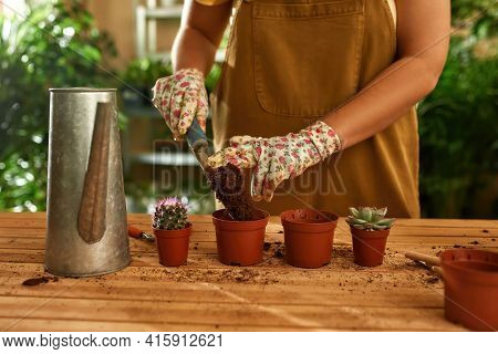 Girl Standing At The Table And Pours Soil Into The Pots Of Plants. Girl Gardener Prepare Land For Pl