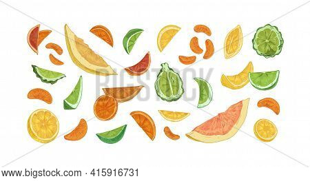 Set Of Different Citrus Fruits Isolated On White Background. Hand-drawn Slices, Segments And Pieces