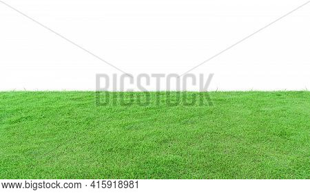 Green Grass Field Isolated On White Background.