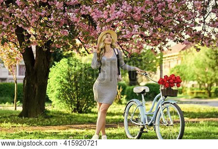 Happy Moments. Cherry Tree Blooming Flowers. Pink Blossoming Sakura. Relax In Park. Fashion And Beau