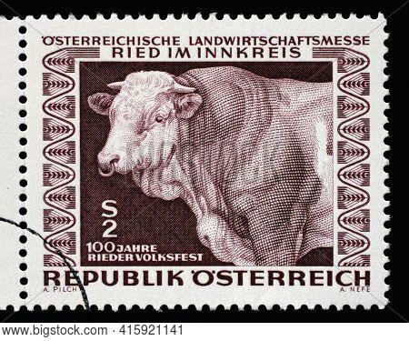 ZAGREB, CROATIA - SEPTEMBER 09, 2014: Stamp printed by Austria shows Prize bull, Austrian Agricultural Fair, Ried (Upper Austria), circa 1967.