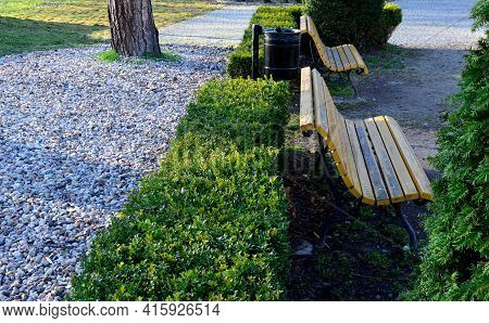 Hedge Of Boxwood And Pine Tree Trunk By The Road In The Park With Curved Benches By The Pond. Wood P