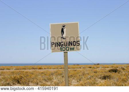 Valdes Peninsula, Road Sign Warning Of The Presence Of Wild Penguins. The Valdes Peninsula Is A Peni