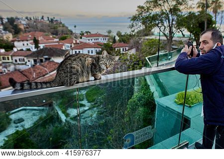 Antalya, Turkey - March 19, 2021: Stray Cat Sits On Railing Of An Observation Deck Over Old City In