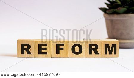 The Word Reform On Wooden Cubes On A Light Background Near A Flower In A Pot. Defocus