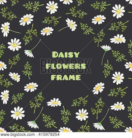 White Daisy Frame. Square Background, Round Place For Text