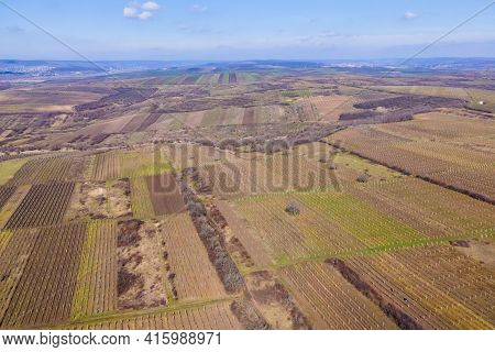Vertical Stripes Of Agricultural Parcels Of Different Crops. Aerial View Shoot From Drone Directly A