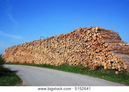 Renewable Energy  Lumber  2