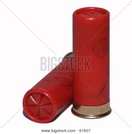 Shotgun Cartridges On White