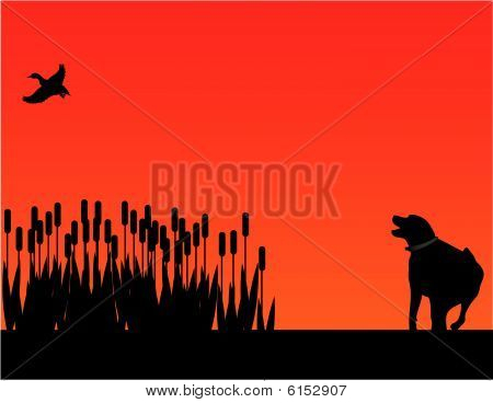 Bird dog hunting at sunset silhouette
