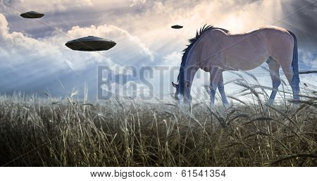 Horse grazing with UFOs floating nearby