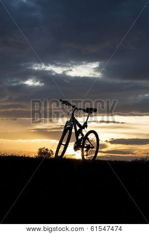 Evening Recreation With Bicycle
