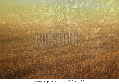 Abstract Field With Grungy Finish